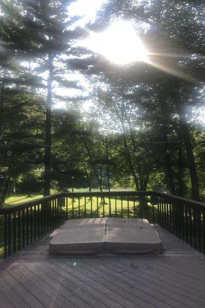 Deck overlooking tall trees in backyard